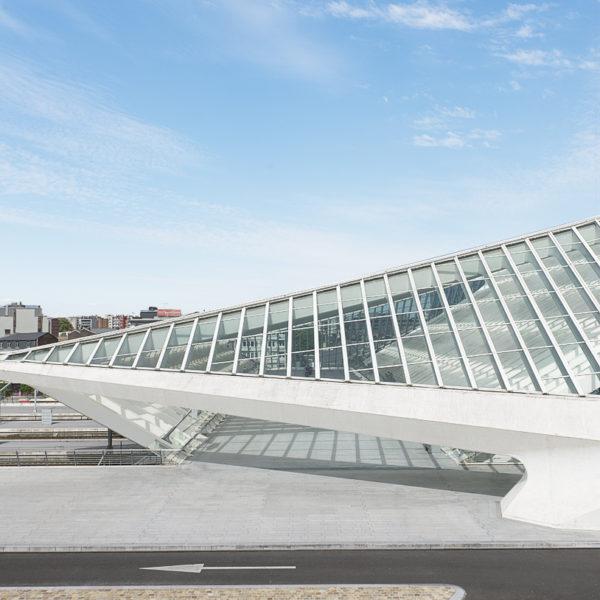 La Gare de Liege-Guillemins